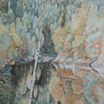 Vom Okertal Harz